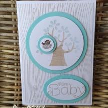 Baby (4)