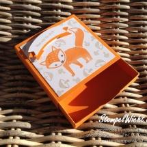 Foxy Friends (3)